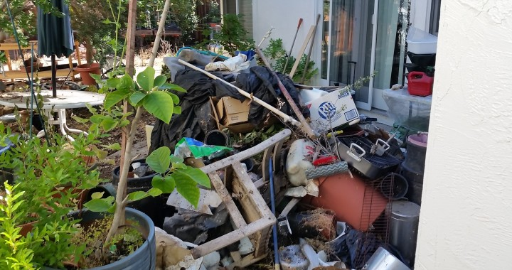 Great Junk Removal Saves A Backyard In Dublin, California