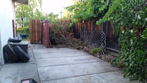 West Coast Junk Removal backyard 2