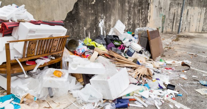 Illegal dumping in San Jose can lead to pest infestations like bedbugs and rats, citations and large fines.