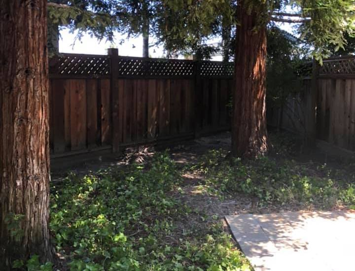 Trash cleared! Deck removal and old wood hauling in Danville, CA